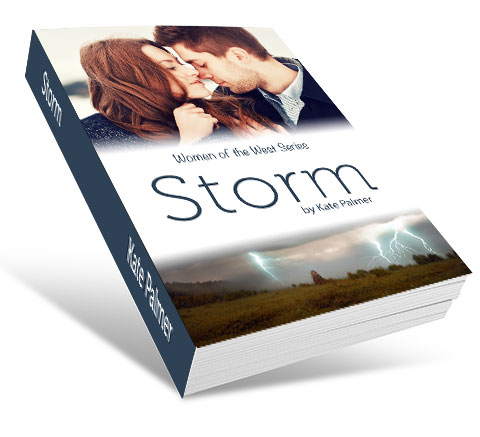 storm_mockup