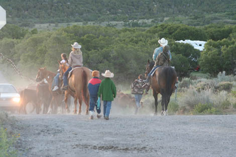 5AM Cattle Drive and a Giveaway